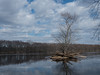 Small Island at Wild River State Park