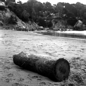 Muir Beach, California  I shot this with Mamiya C220 while recovering from jet lag from out trip to Singapore. It was a cold day but there still was few people there enjoying the beach. The rugged coastline of northern California is mesmerizing with rough rock walls hugging small sandy beaches. I like walking on the beached looking for what people or the sea has left on the sand. The water is always too cold for me to swim, but I still like sitting on the sand on a warm day.
