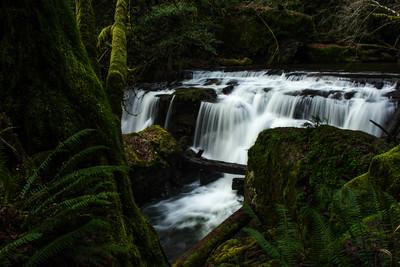 Roseburg Water Falls