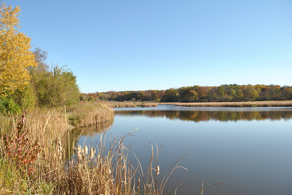 Duffield Pond -McHenry County Conservation Dist<br />       Country Club Road - Woodstock, IL<br /> <br />  Jessi Bloniarz - Woodstock, IL
