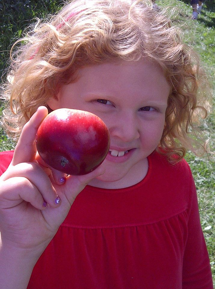 Sophia<br />   Royal Oaks Farm & Orchard - Harvard, IL<br /> <br /> Becky Coduto - Crystal Lake, IL