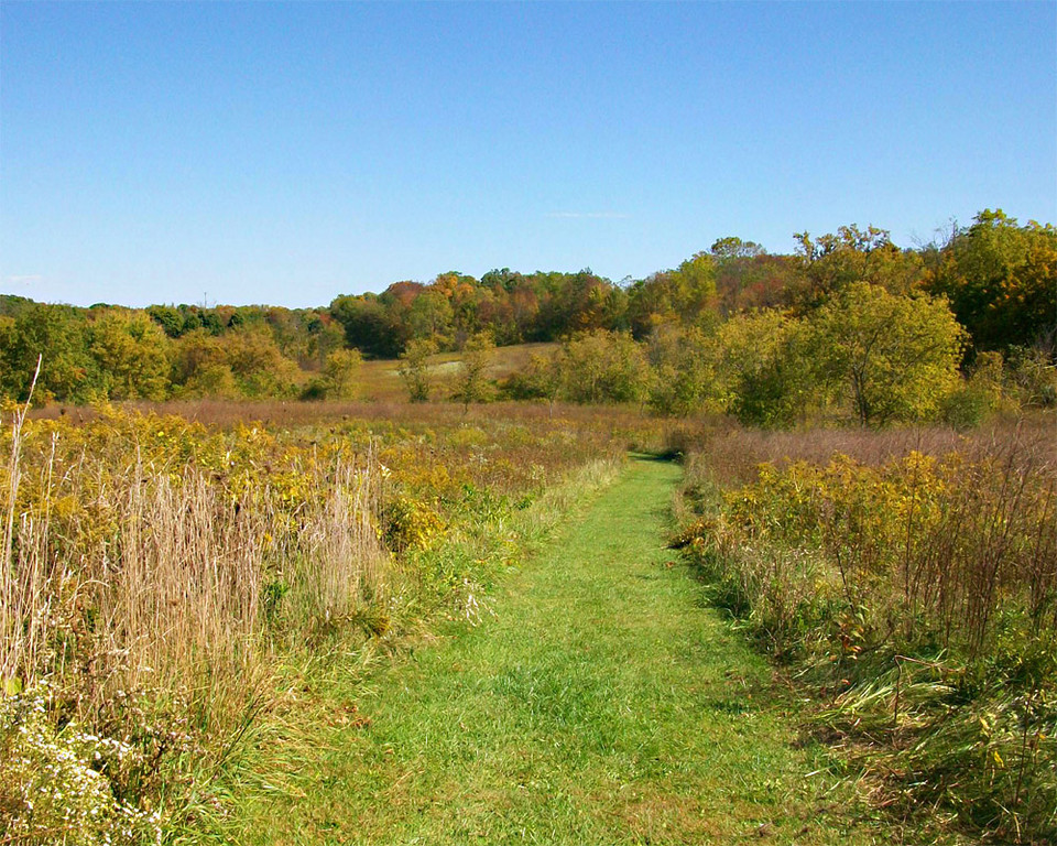 Coral Woods <br />   McHenry County Conservation District  Marengo,IL<br /> <br />  Trisha Doornbosch - Woodstock,IL
