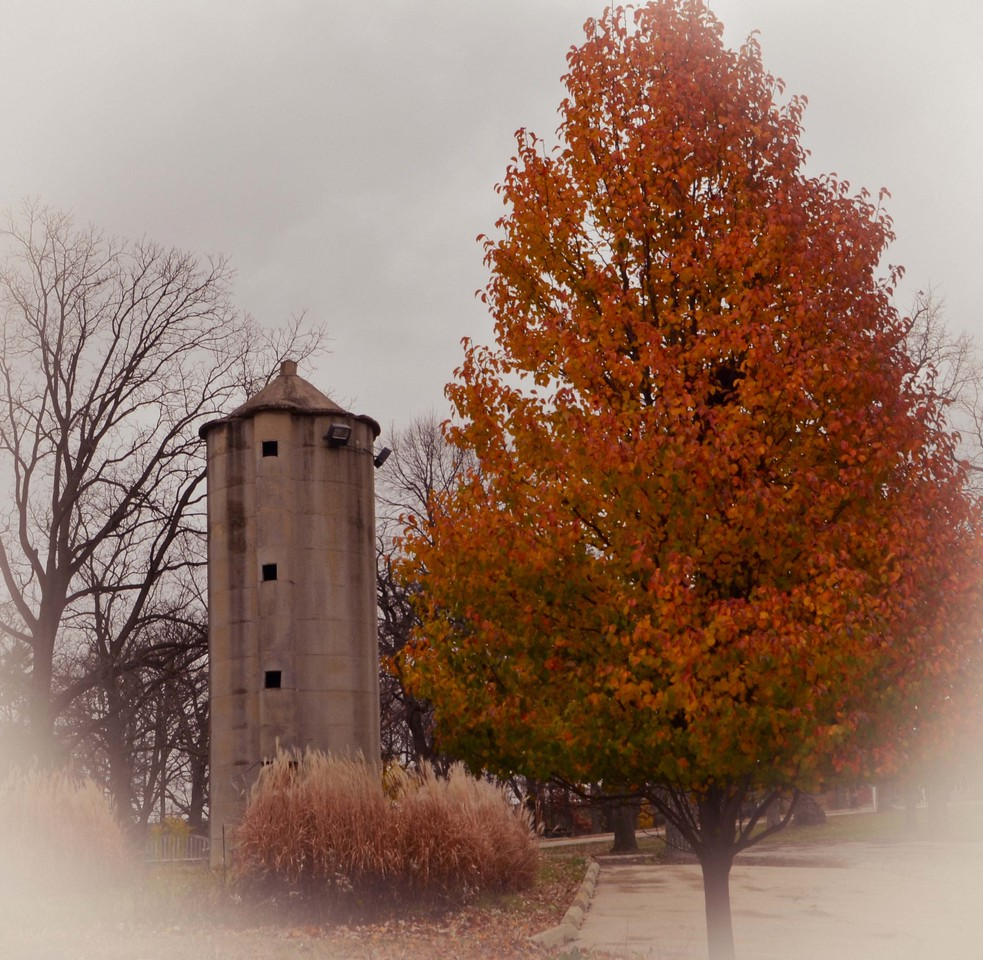 Old silo at the Fox River Country Day School.<br />     Rt. 25 in Elgin,IL<br /> <br /> Susan Jacobsen - Huntley,IL