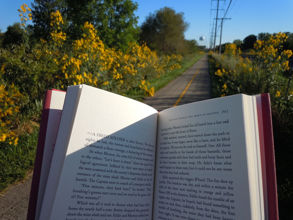 """My photo was taken on the bike path near my home on a spectacularly clear, crisp and sunny morning in September when the path becomes a golden gauntlet of wild flowers. Even if I could ride my bike and read at the same time, the golden daisies up against the blue sky would keep drawing my eyes up to the surrounding """"frame."""" <br /> <br /> Anneliese West<br />    McHenry, IL"""