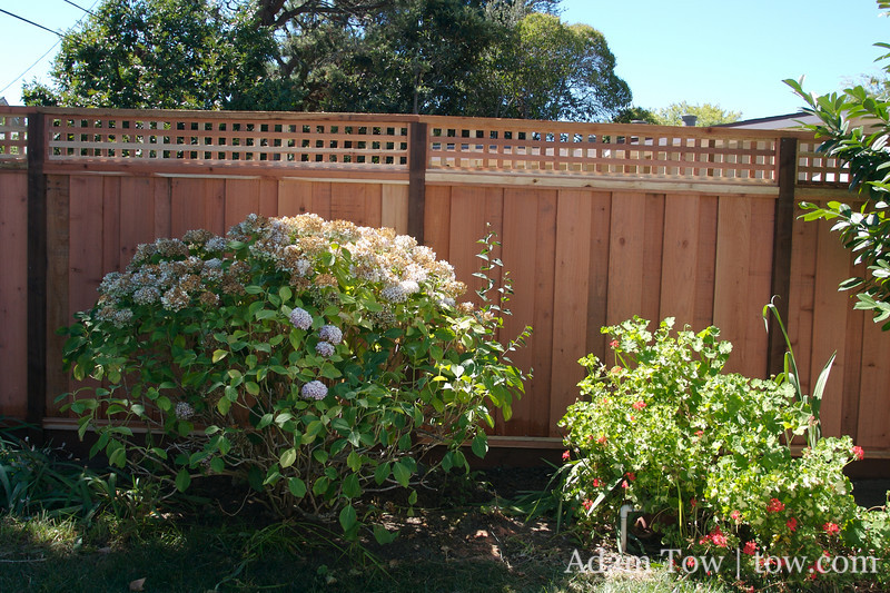 Once there was nothing, now there is a fence!