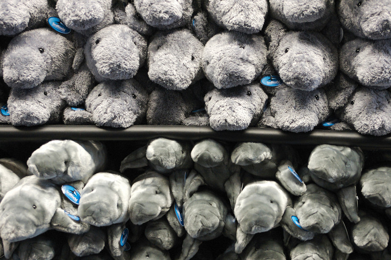 Manatee plush toys at Sea World.