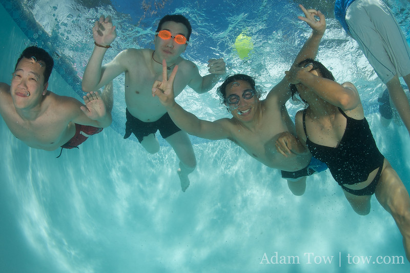Tim, Randy, Adam and Rae underwater.