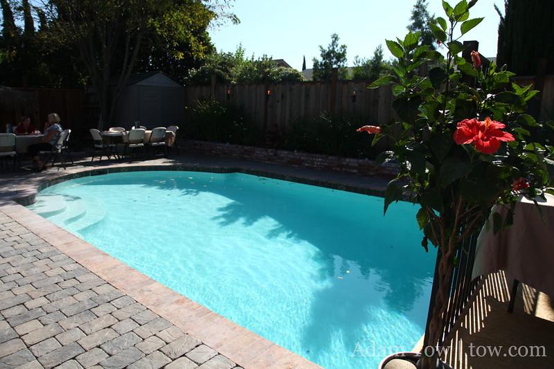 Lana and Albert's pool.