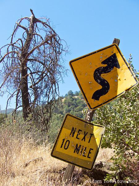 Curvy roads ahead or target practice ahead?