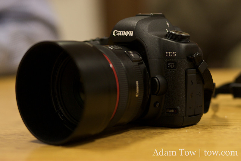The 5D Mark II at the November 2008 COBA meeting.
