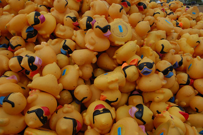 Dublin Rubber Ducky Derby
