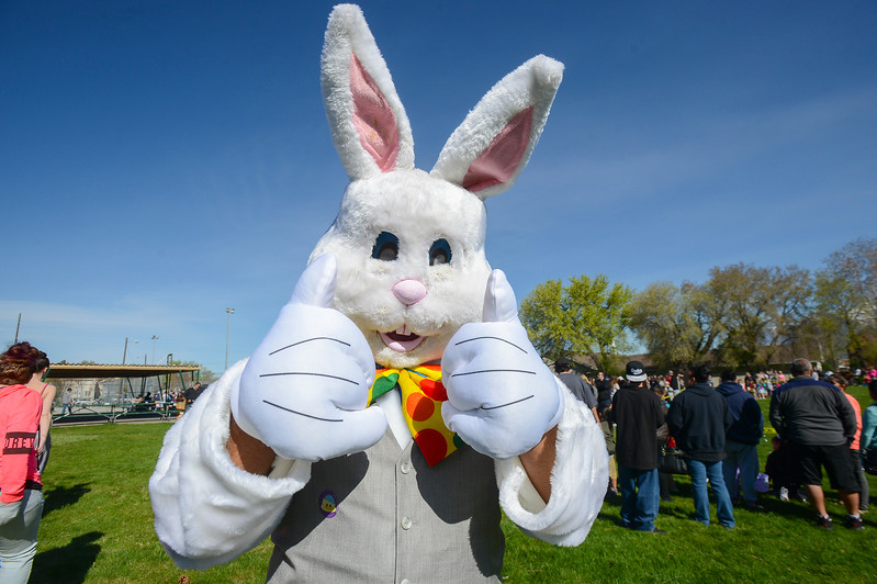 Lavell Waiters dresses up in a bunny costume to interact with the kids.Ogden City Recreation placed over 15,000 eggs for 4 different age groups to find at the Marshall White Center in Ogden on Saturday April 15, 2017.