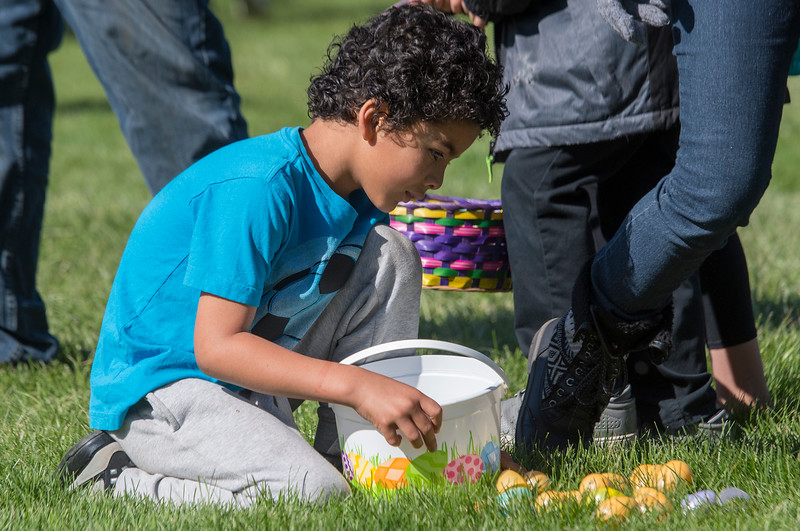 Anthony Parker from Roy counts his Easter eggs after the hunt at the Marshall White Center in Ogden on Saturday April 15, 2017.