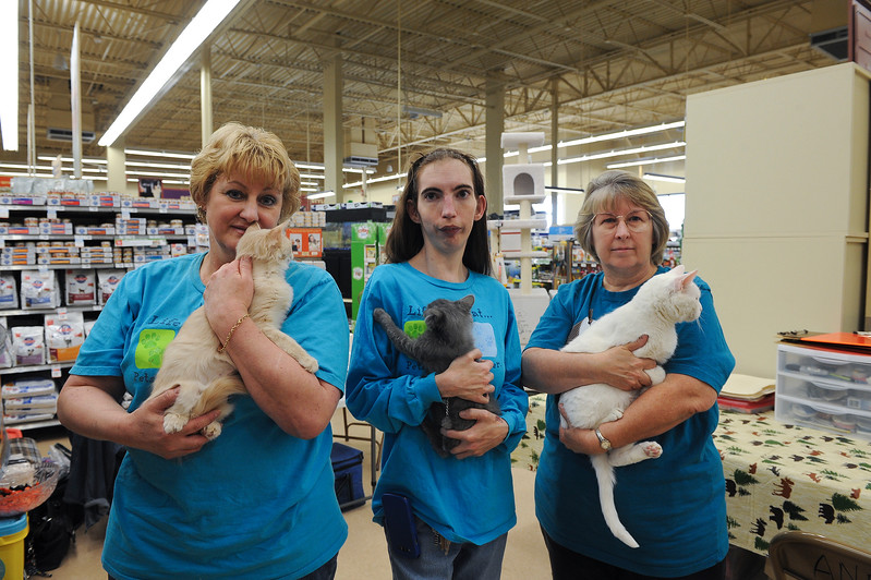 Gabi Johnson, Debbie Hasbrouk(middle) and Julia Despain take in animals in need and give them great homes. They vow to never let any animals slip between the cracks and forgotten about. A New Beginning Animal Rescue is a no euthanization operation. At a Layton Petco. On November 30 2013. (Brian Wolfer Special to the Standard-Examiner)
