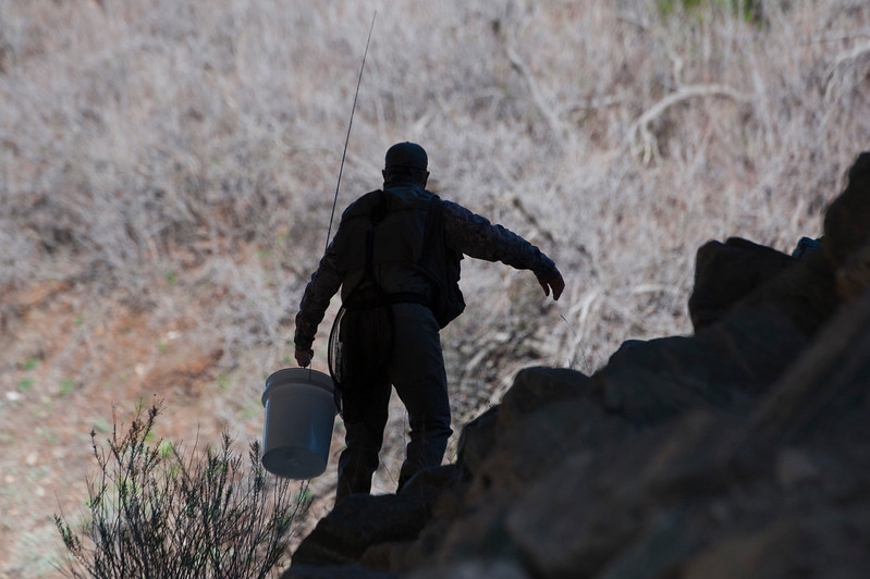 Trout Unlimited's Charlie Card climbs over rock to get in postion to catch a Bonneville cutthroat trout. The fish will be scanned to determine if an electronic 'pit' tag has been implanted in the fish. In the Weber Canyon on April 11, 2015.