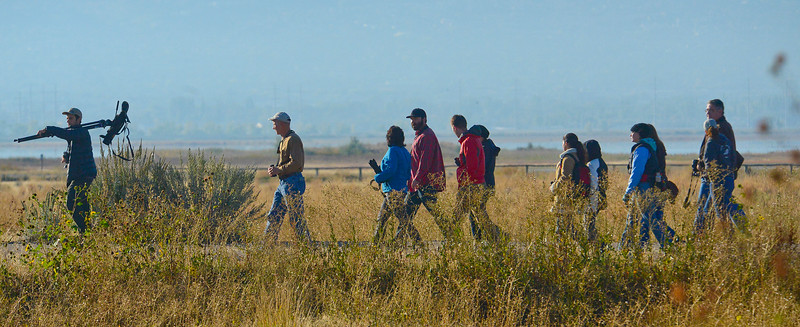 Utah Birders and Great Salt Lake Audubon walk the trails at the bird refuge. They want to stop a proposed highway that will go right through the Davis wetlands. In Farmington on October 5 2013. (Brian Wolfer Special to the Standard-Examiner)