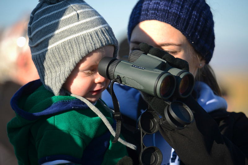 Sydney Elwood and her young son Wyatt spend the morning birdwatching. Shared Solution wants to stop a proposed highway that will go right through the Davis wetlands. In Farmington on October 5 2013. (Brian Wolfer Special to the Standard-Examiner)