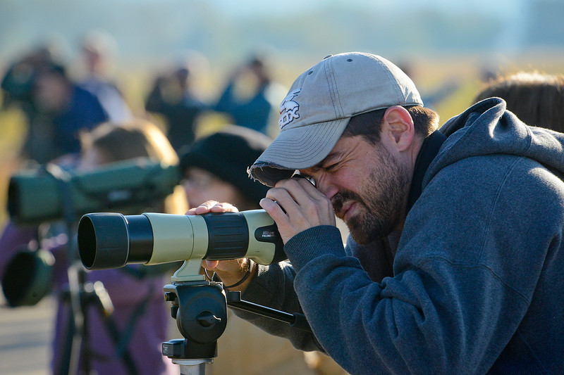 Jeff Billsky a avid birdwatcher watches birds and identifies many of the bird species. In Farmington on October 5 2013. (Brian Wolfer Special to the Standard-Examiner)
