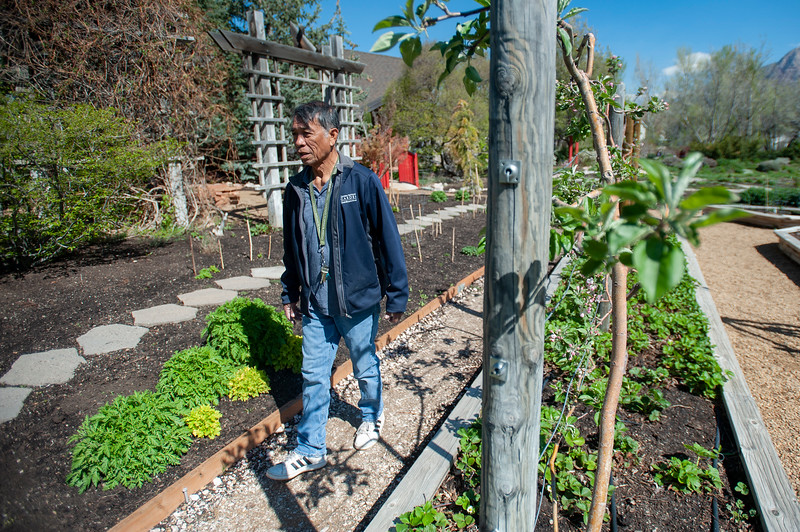Vic Robite takes care of the Ogden Botanical Gardens' rose gardens. He's been doing it since 1995, so he's celebrating his 25th anniversary in that role this year, in Ogden on April 28, 2021.