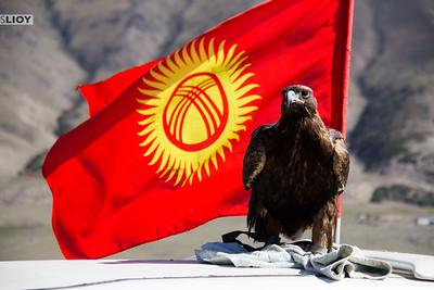 Eagle and Kyrgyz flag at World Nomad Games