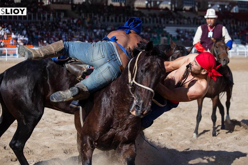 Horse Wrestling Er Enish at the 2016 World Nomad Games in Kyrgyzstan.