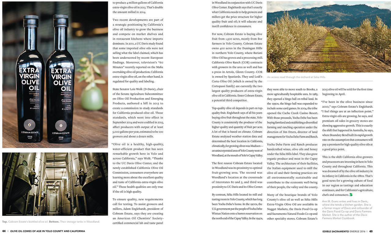 ESM_Issue_44_Olive_Oil -2
