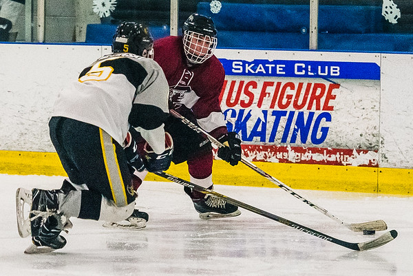 University of South Carolina Vs. Kennesaw State at Plex Ice, in Irmo on February 2, 2019. John A. Carlos II