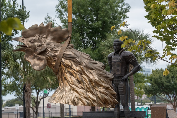 The head of an 800 square-foot gamecock sculpture moves past a statue of George Rogers outside of Williams-Brice Stadium in center of the Lloyd Family Courtyard, on Sept. 10, 2020. John A. Carlos II / Special to The Post and Courier