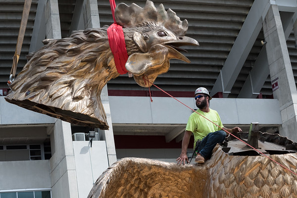 Christopher Cameron of D and T Steel watches the head of an 800 square-foot gamecock sculpture, outside of Williams-Brice Stadium in center of the Lloyd Family Courtyard, on Sept. 10, 2020. John A. Carlos II / Special to The Post and Courier