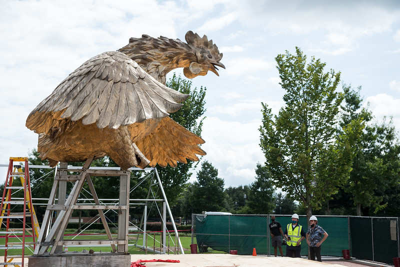 Sculptor, Jon Hair looks at his 800 square-foot gamecock sculpture outside of Williams-Brice Stadium in center of the Lloyd Family Courtyard, on Sept. 10, 2020. John A. Carlos II / Special to The Post and Courier