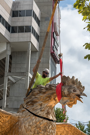 Christopher Cameron of D and T Steel moves the head of an 800 square-foot gamecock sculpture into place, outside of Williams-Brice Stadium in center of the Lloyd Family Courtyard, on Sept. 10, 2020. John A. Carlos II / Special to The Post and Courier