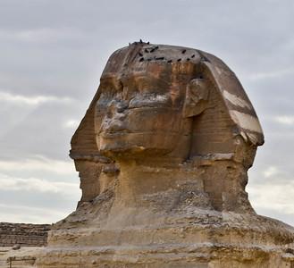 Cairo - Wonder of The World 1