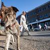 Dogswalk_RLoken_027_3145