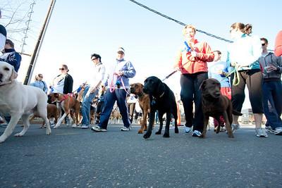 Dogswalk_RLoken_024_3120