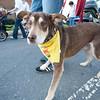 Dogswalk_RLoken_022_3113
