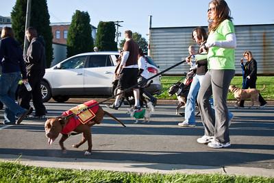 Dogswalk_RLoken_030_3154