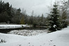For the Enterprise/John Kossik<br /> Snow on the pond in Mill Creek