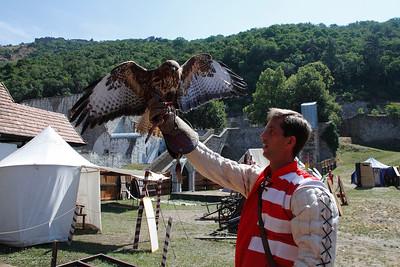 Falconer with Buzzard — Solymász az ölyvével