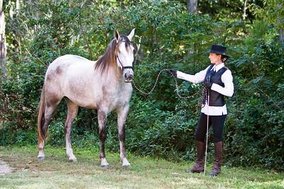 Horse_POB_RLoken_017_7883