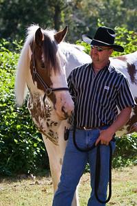 Horse_POB_RLoken_022_7890