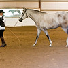 Horse_POB_RLoken_014_7867