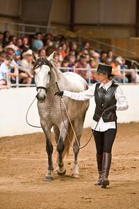 Horse_POB_RLoken_015_7871