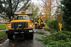 10.30.12- BALTIMORE,  MD- Baltimore County workers remove a downed tree, blown over by winds from Hurricane Sandy to clear a residential street in Rogers Forge.  (Maximilian Franz/The Daily Record).