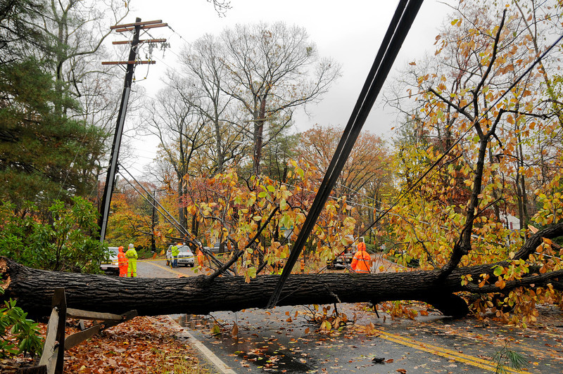 10.30.12- BALTIMORE,  MD- Power company workers from BGE and ComEd, a Excelon Company, shown here preparing to deal with a tree that fell across Providence Road at the Intersection of Hart Road in Baltimore County that knocked power out to a large section of the area.  (Maximilian Franz/The Daily Record).