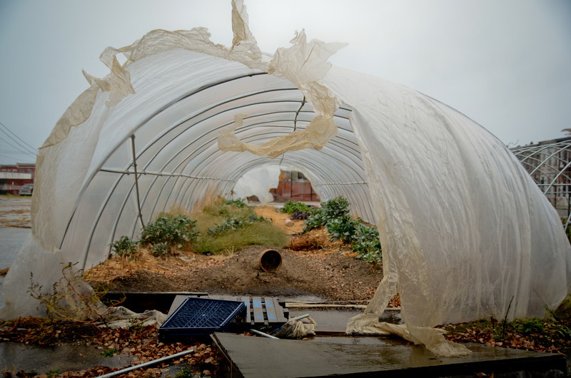 10.29.12- BALTIMORE,  MD- Due to high wind bursts an urban greenhouse is in tatters near the intersection of North Avenue and Aisquith Streets.  (Maximilian Franz/The Daily Record).