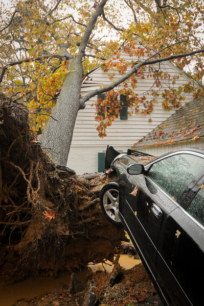 10.30.12- BALTIMORE,  MD- A large Oak tree fell on the home and lifted the car of owner Andy Smith on Hillen Road near Towson. The Tree fell during high winds around 6:30 pm on October 29th, 2012 around the time Hurricane Sandy made landfall. The Family was in the home but no one was injured. (Maximilian Franz/The Daily Record).