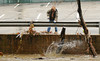 10.30.12- BALTIMORE,  MD- Workers for the Meadow Mill complex in Hamden, are shown here clearing the bridge over the Jones Falls river that was covered with debris left by receding flood water from heavy rains from Hurricane Sandy. (Maximilian Franz/The Daily Record).