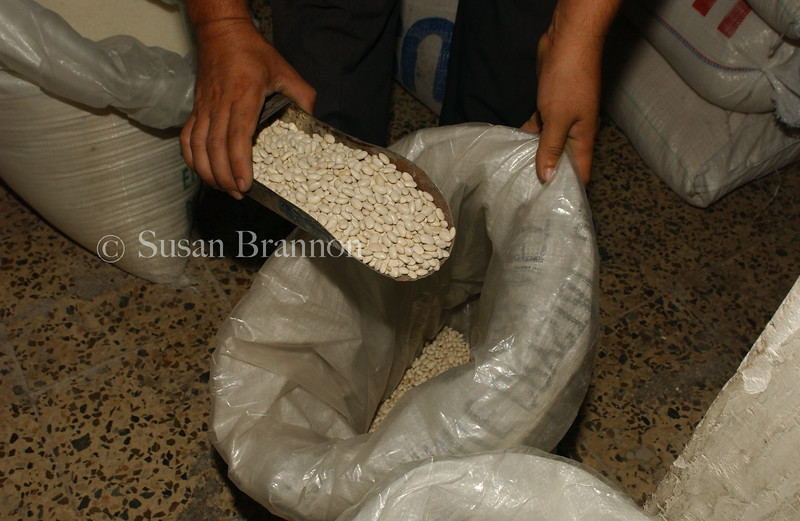 These are beans that are distributed through the food for oil program, which is currently under threat to continue.  October 2003