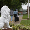Lion in front of West Charlotte HS.
