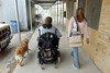Jeremy Sohoski, 16, of Fannett,  who has Duchenne muscular dystrophy, and friend, Brittany Brode, 15, along with his service dog Shanna, head back to class after lunch at Hamshire Fannett High School.<br /> PHOTO/SCOTT ESLINGER                   OCT 19, 2004<br /> 1019_Jeremy121.jpg
